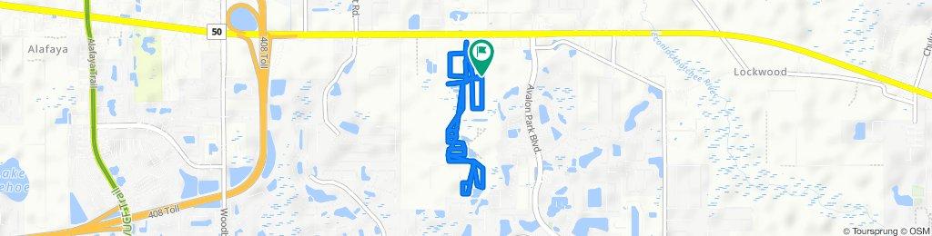 Slow ride in Orlando