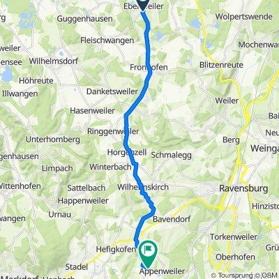 Mörderische Fahrt in Friedrichshafen