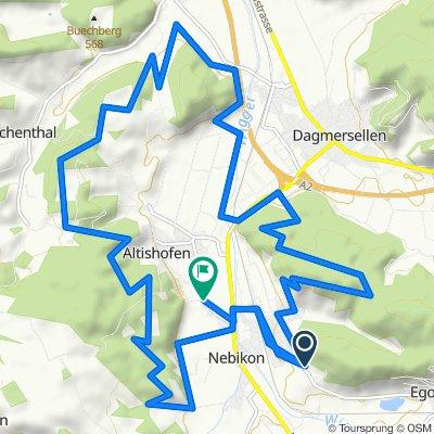 Baumacher 22, Nebikon nach Feld 3, Altishofen