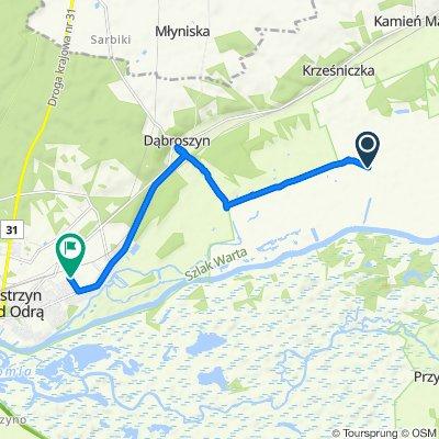 Restful route in Kostrzyn
