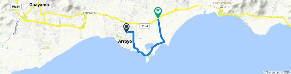 Calle Morse 111, Arroyo to Camino Punta Guilarte, Arroyo