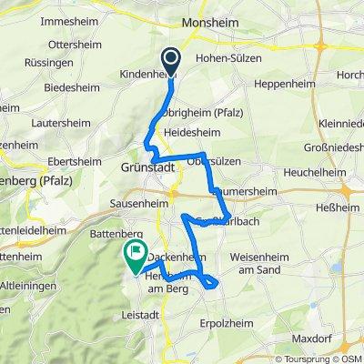 2020-07-03 Bockenheim - Weisenheim am Berg (26 km)