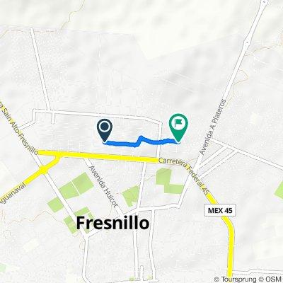 De Calle Sierra de Valdecañas 207, Fresnillo a Genaro Vázquez 14, Emiliano Zapata