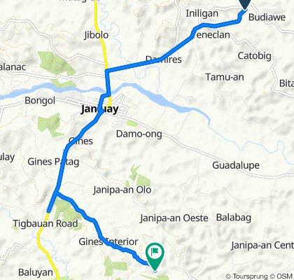 Janiuay - Badiangan Road to Unnamed Road, Cabatuan
