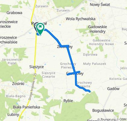 Trasa z Łąkowa 3, Rychwał