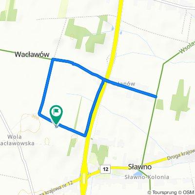 Powolna trasa w Wolanów