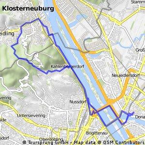 Kahlenberg Mountainbikestrecke