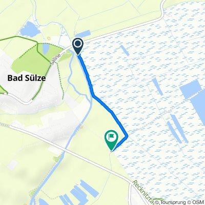 Stadtrandsiedlung, Bad Sülze nach Tribseeser Straße, Bad Sülze
