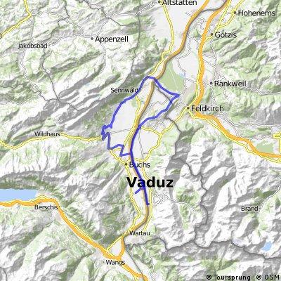 Triesen-Schellenberg-Gams-Buchs-Sevelen