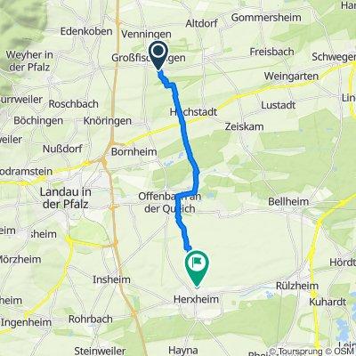 Sporty route in Herxheim bei Landau/Pfalz