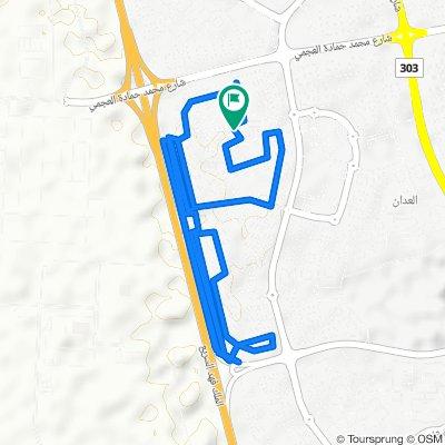 Slow ride in Sabah Al-Salem
