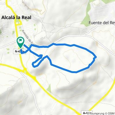 CRONO ALCALÁ 2017
