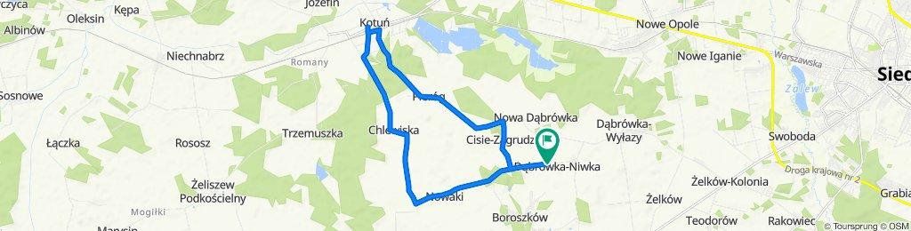 Dąbrówka-Niwka do Dąbrówka-Niwka