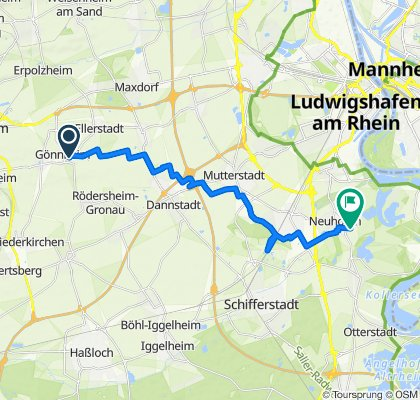 Moderate Route in Neuhofen