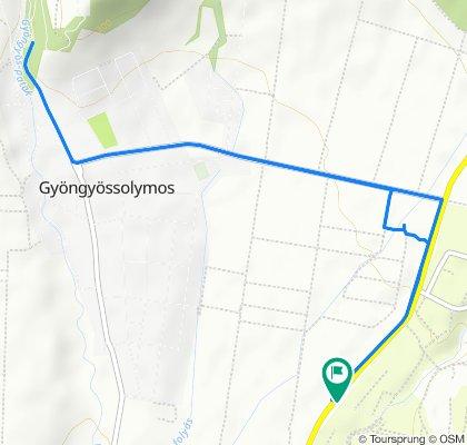 Farkasmály-Gyöngyössolymos 9 km