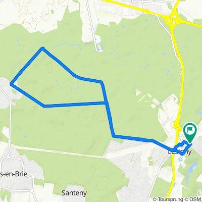 Forest biking in Lesigny (12km)