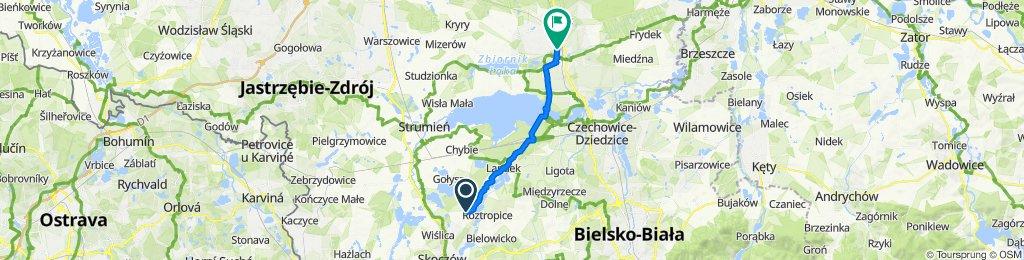 Mostowa 7, Pierściec do Stanisława Ligonia 8, Pszczyna