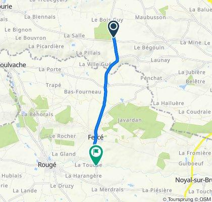 D107, Martigné-Ferchaud naar Le Pont Timonier, Rouge