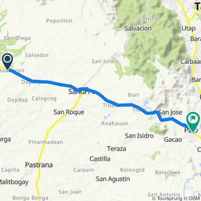 Palo-Carigara-Ormoc Road, Alangalang to San Salvador Street, Palo