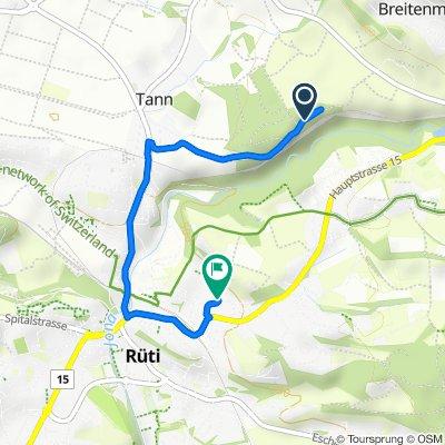 Route nach Sonneckstrasse 5, Rüti ZH