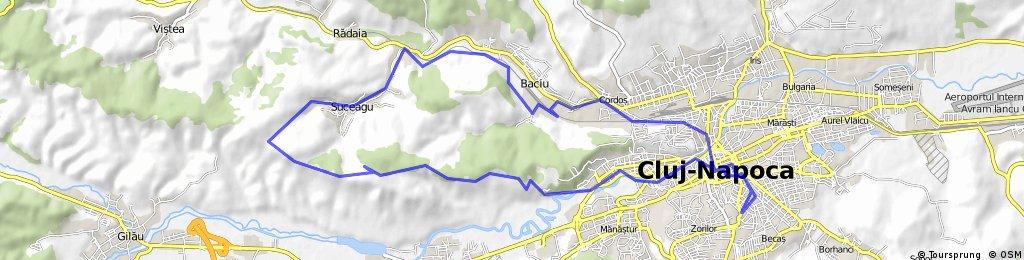 Hoia - Suceag