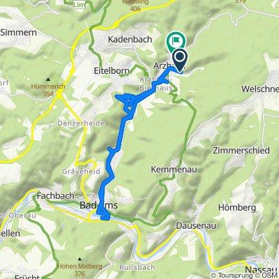 Langsame Fahrt in Arzbach