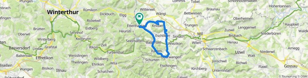 Mörderische Fahrt in Ettenhausen TG