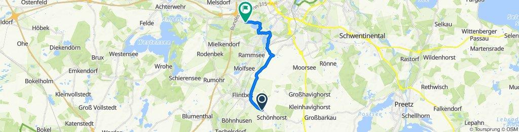 L307, Flintbek nach Rendsburger Landstraße 384, Kiel