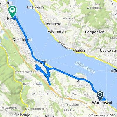 Oberdorfstrasse 27-31, Wädenswil nach Thalwil