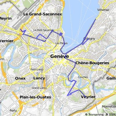 Genf-Mont Saleve (F)
