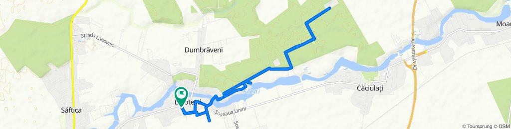 Restful route in Baloteşti