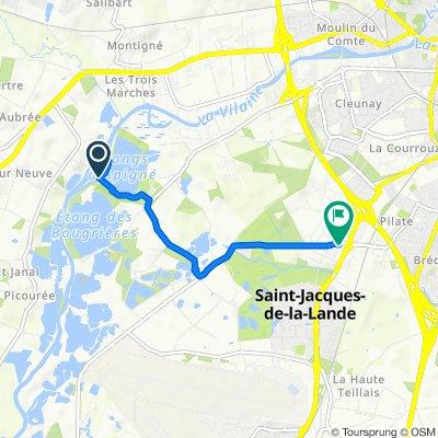 De Chemin Rural du Moulin d'Apigne à la VC 14, Rennes à 36 Rue Ernest Renan, Saint-Jacques-de-la-Lande
