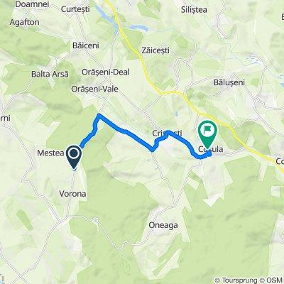 DJ208C, Vorona to DC52C, Coșula