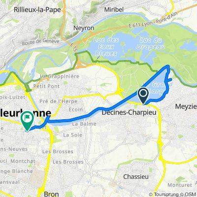 De Chemin de Contre Halage, Décines-Charpieu à 24 Rue de la Baïsse, Villeurbanne