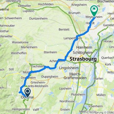 von Obernai bis Weyersheim
