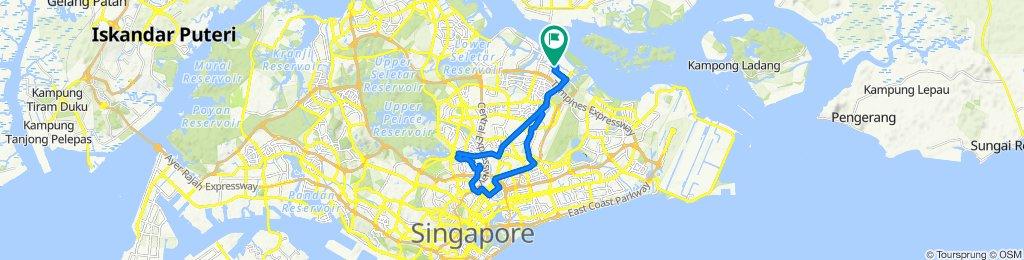 Punggol Drive 612B, Singapore to Damai Stn Exit A, Singapore