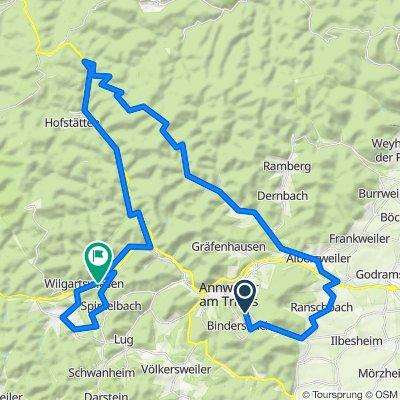 Pfälzerwaldtour ab der Burg Trifels über Eußerthal und Hauenstein nach Wilgartswiesen