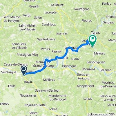 155–157 Avenue de Cahors, Couze-et-Saint-Front naar 120A Pech de Bertrou, Les Eyzies-de-Tayac