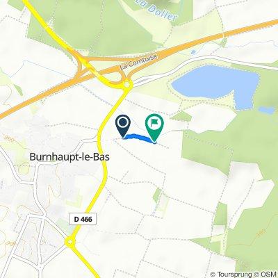 Steady ride in Burnhaupt-le-Bas