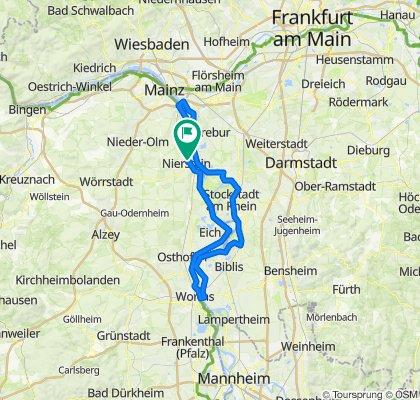Mainz - Worms Brücken
