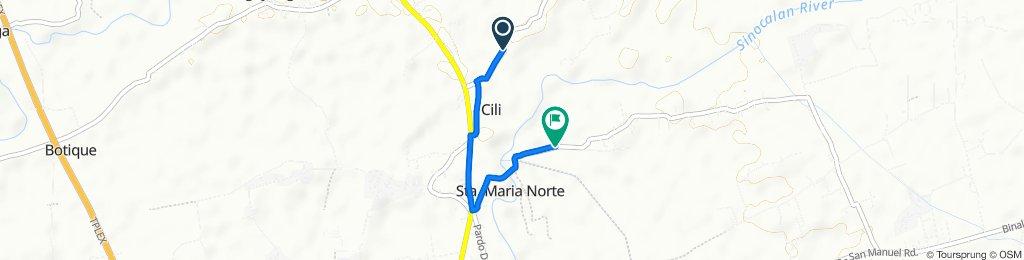Cili-Moreno Road, Binalonan to Mangcasuy Road, Binalonan