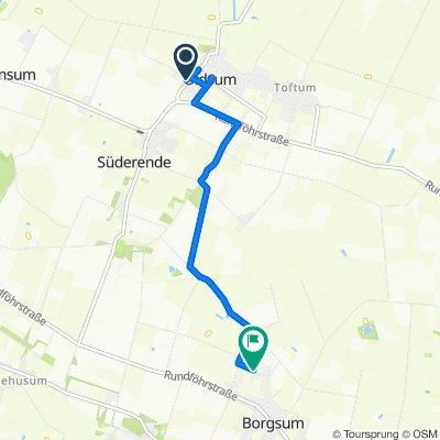 K126, Oldsum nach Noorderwoi 10, Borgsum