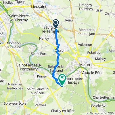 De Route Nationale, Réau à 753 Avenue Marguerite Perey, Dammarie-les-Lys