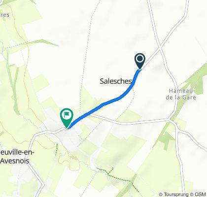 Langsame Fahrt in Salesches