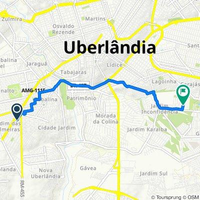 De Rua dos Tucanos, 198, Uberlândia a Rua Renato de Oliveira Grama, 201, Uberlândia