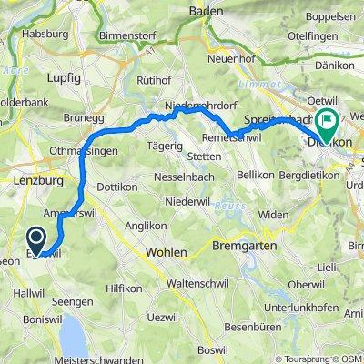 Roniweg 27, Egliswil nach Zentralstrasse, Dietikon