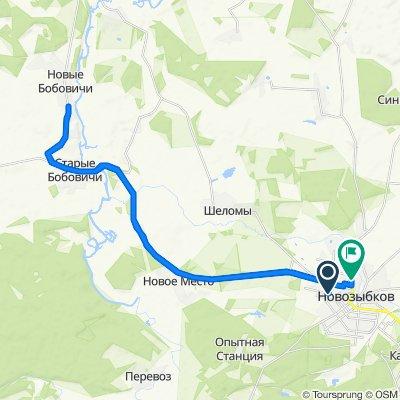 От улица Урицкого 48, Новозыбков до улица Наримановская 27а, Новозыбков