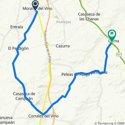 De Calle de Solana, 14, Morales del Vino a Calle Zamora, 26, Gema
