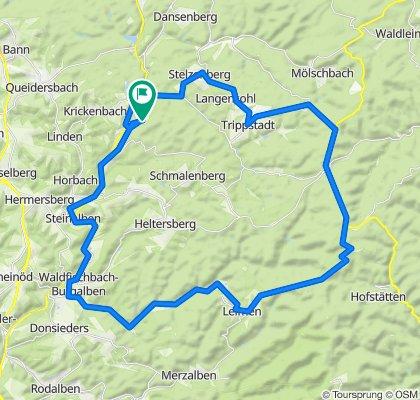 Durch Pfälzer Wald u. Sickinger Höhe - RTF des RV 1921 Schopp e.V. - 42 km Strecke