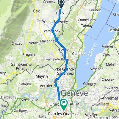 De Route de Divonne-les-Bains, Grilly à Avenue des Communes-Réunies 70, Grand-Lancy